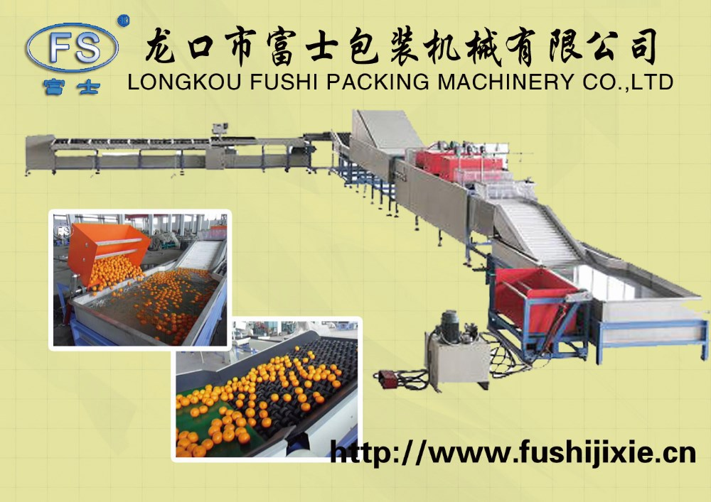 CE/ISO9001 Approved Apple Washing Waxing Grading Processing Line