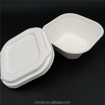 Eco-friendly white paper bagasse sugarcane food box