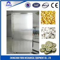 quick freezing machine/freezing fish equipment