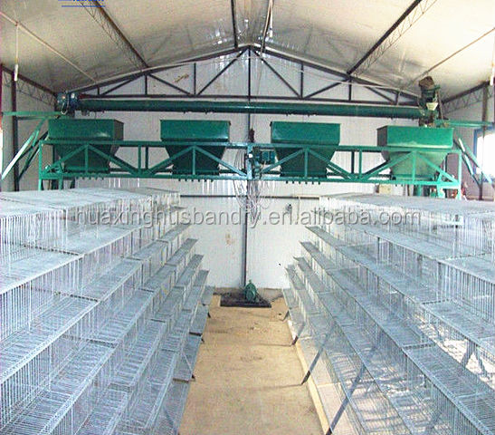 battery quail rearing cage for poultry layer quail farm