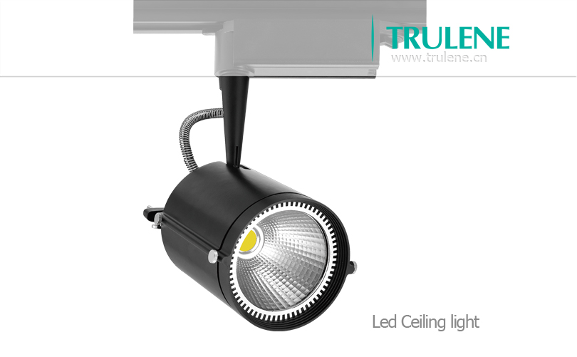 spot track light led.jpg