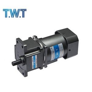 T.W.T 4IK25GN-C 220v high torque low rpm electric AC motor