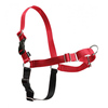 Professional Reliable Manufacturer Customized Pet Harness