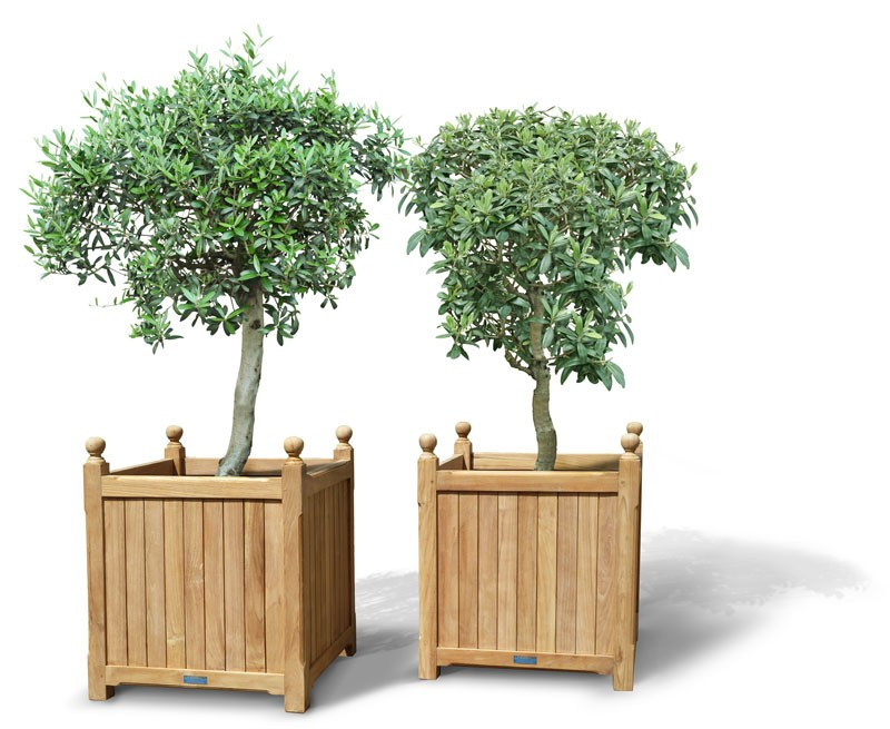 Wooden succulent planters wooden succulent planters suppliers and wooden succulent planters wooden succulent planters suppliers and manufacturers at alibaba workwithnaturefo
