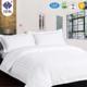 Luxurious Bedding Collection 100% Organic Cotton Sheet Set Soft Durable White color queen Bedding set