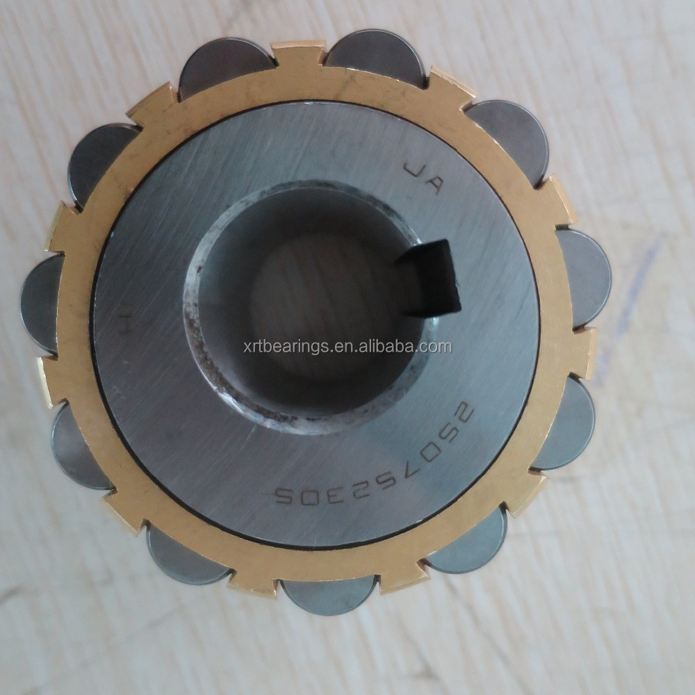 Eccentric bearing RN205 RN206 RN307 RN309 for Reducer pendulum piece