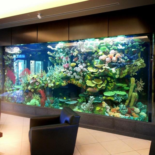 PG redondo grande tanque de peces de acuario personalizado claro cilindro acrílico