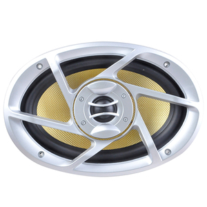 800W Car Subwoofer Speaker Car Woofer TS-A6990Y