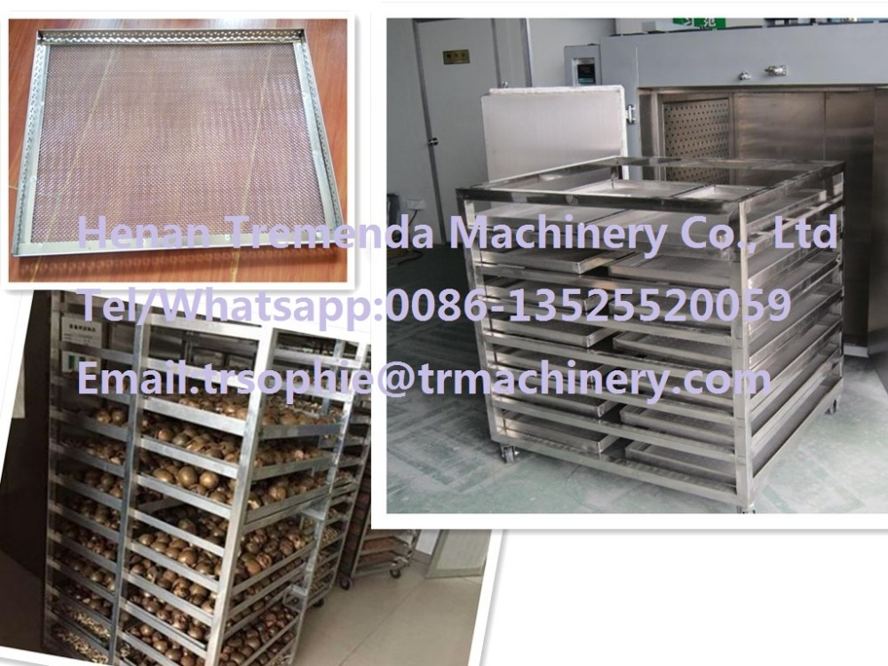 freeze drying machine for sale