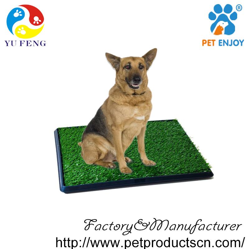 Dog Potty Shenzhen Toilet Training Pad Park Patch Mat Indoor ...