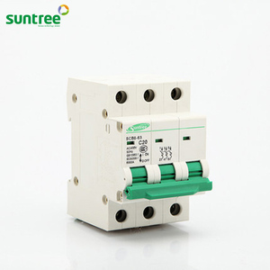 Suntree 2P 63A 400V 50HZ/60HZ Circuit Breaker AC MCB Safety C Type