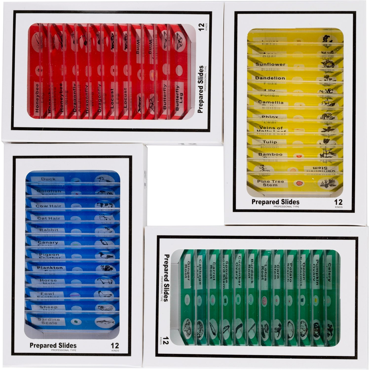 AMSCOPE-KIDS 48pcs Kids Plastic Prepared Microscope Slides of Animals Insects Plants Flowers Sample Specimens for Stereo Microscopes