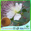 Free sample 100% natural Caper fruit extract/Capparis Spinosa fruit powder