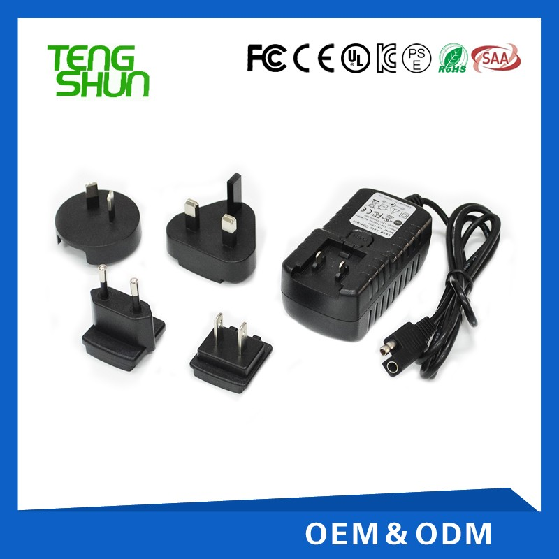 interchangeable EU US UK AUS Plugs smart charger 3.65v1a 7.3v500ma 1a