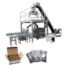Auto fasteners packing system or atuo packaging filling machine for 5kg screw carton box