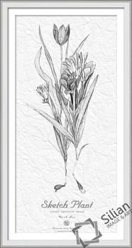Bunga Kertas Lukisan Sketsa Buy Lukisan Bunga Sederhanasatu Bunga