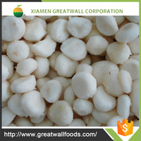 Typical taste fresh water chestnut from china