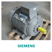 abb siemens westinghouse electric motor 55kw 230/380 AC Voltage and CE Certification