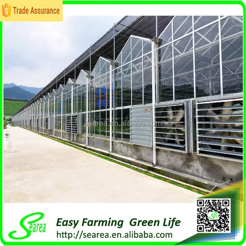 Penjualan panas kaca komersial rumah kaca naungan hijau desain rumah & Gambar Desain Rumah Kaca Pertanian - Mainan Anak