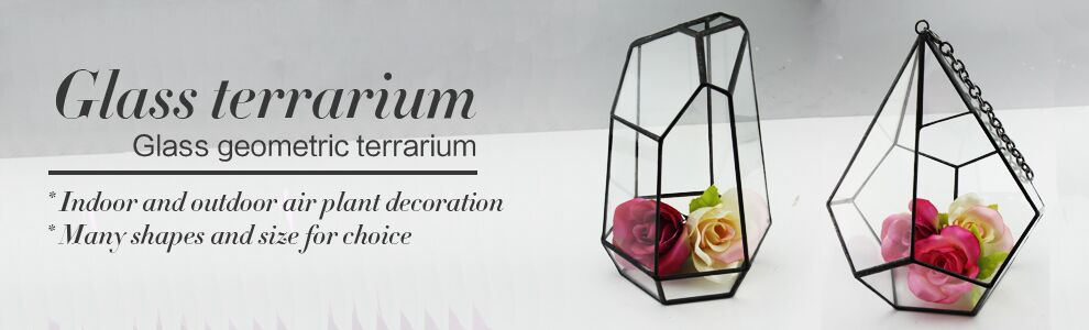 Glass Vases Wholesale Cheap Glass Terrarium Indoor Plant Glass