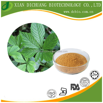 health medical ingredients Natural Gynostemma Pentaphylium Extract Gynostemma saponins 20%-98%
