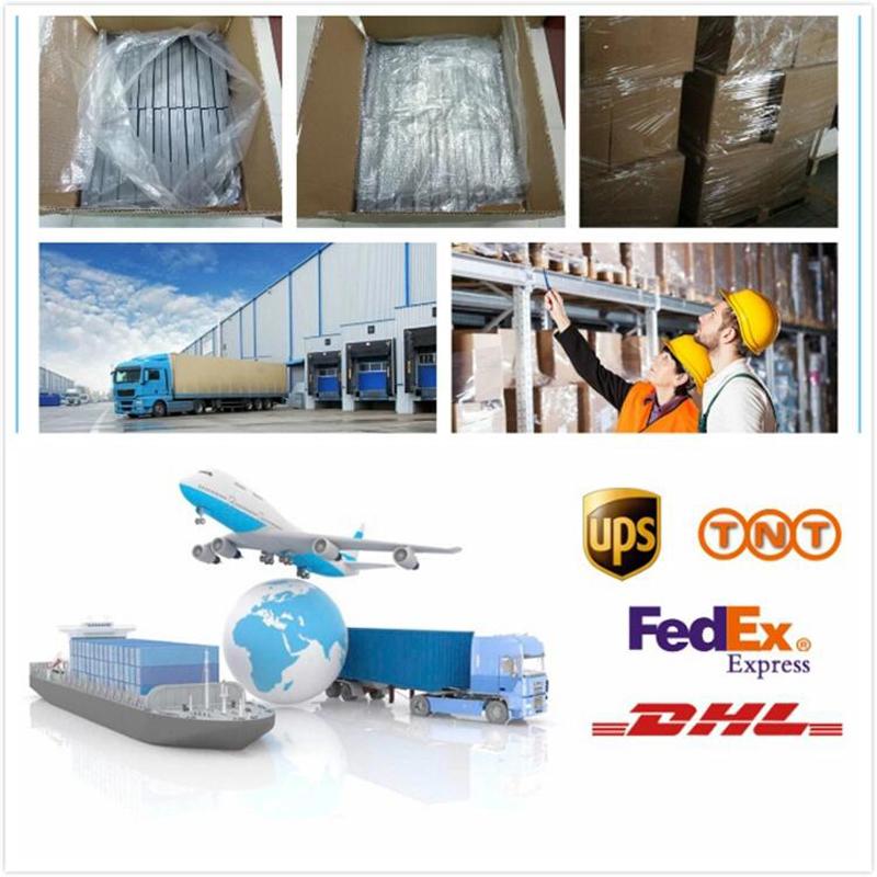 Hot selling Lage prijs Hoge kwaliteit Wholesale wegwerp Clear plastic clamshell 12/18 gaten kwartelei trays/dozen