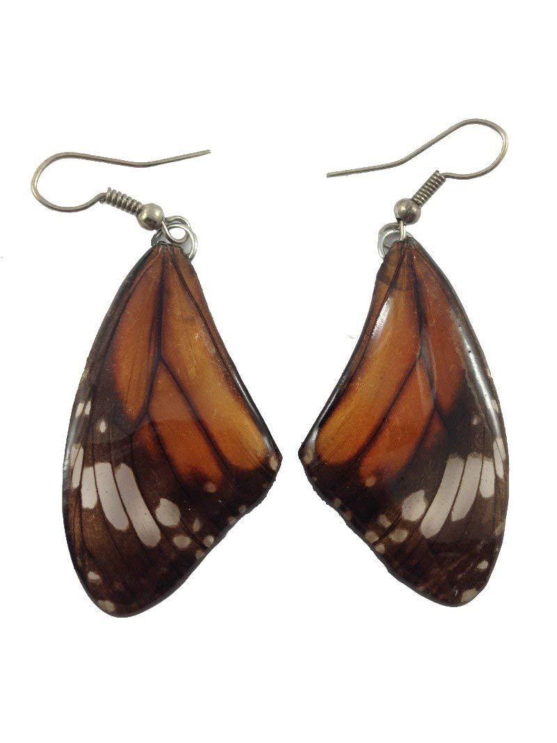 114b9afe0 Get Quotations · Real Butterfly Wing Earrings Silver925 Dangle Earrings Lot  Jewelry Drop/Long Tiger Pattern #029