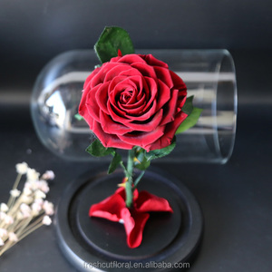 Cheap wholesale stabilized rose in glass preserved rose in glass with wooden base