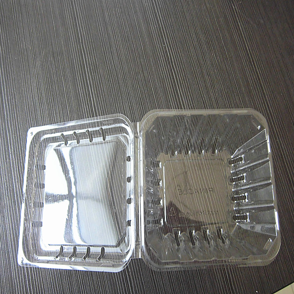 disposable clear plastic buleberry container