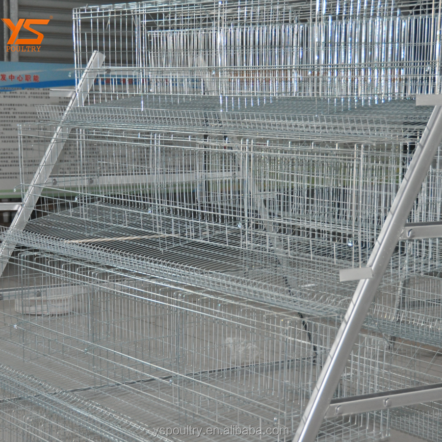Wire Mesh Chicken Layer Cage, Wire Mesh Chicken Layer Cage Suppliers ...