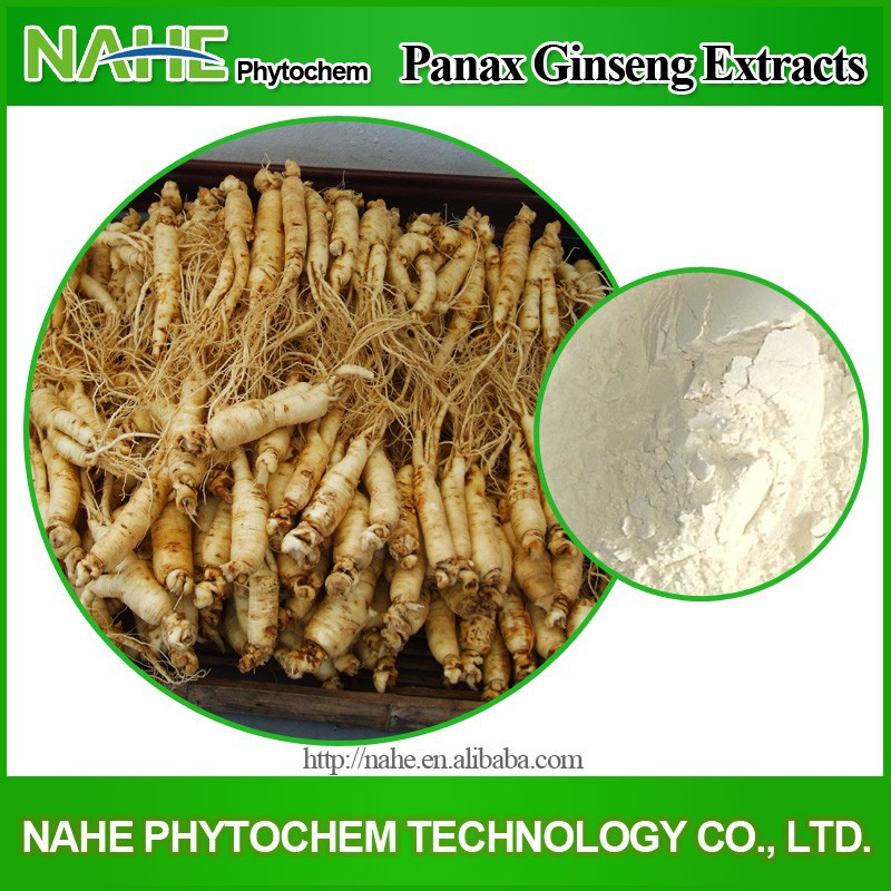 2015 on sale 100% soluble in water panax ginseng extract, White ginseng Extract, changbai mountain ginseng extract powder