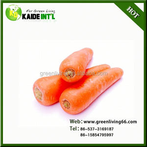 Special Indian Red Carrot