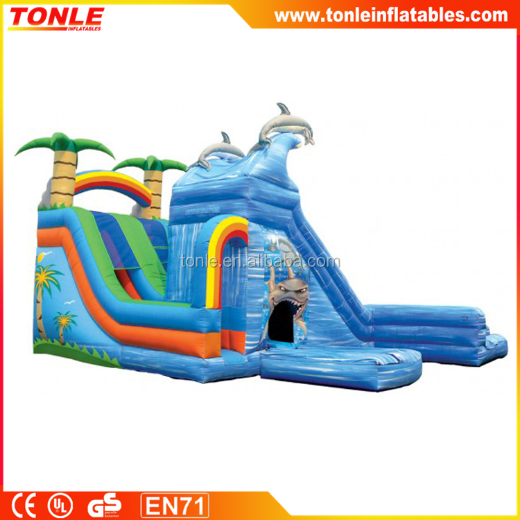 netest wet&wild dual slide with pools inflatable water slide for sale/inflatale slide dry&wet for sale