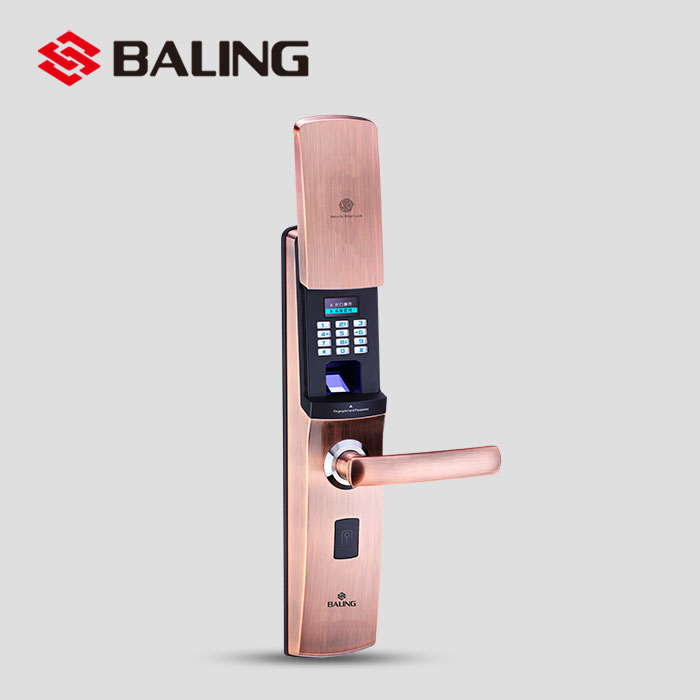 Remote Control Outdoor Fireproof Security Sliding Wooden Biometric Fingerprint Scanner Door Lock