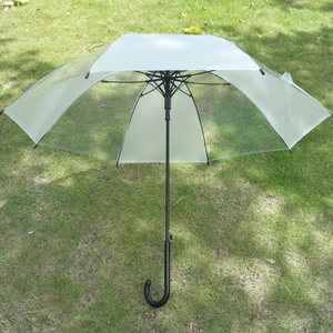 Top Quality Newest 23inch Automatic Straight Clear Transparent POE PVC Plastic Umbrella with Printed Pattern
