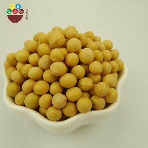 Wholesale Chinese High Quality Hot Sale Yellow Soybeans in Bulk