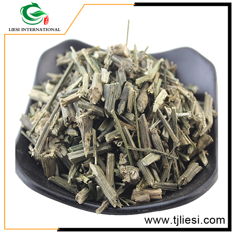 china herbal medicine raw andrographis paniculata leaf extract/crude medicine/ chuan xin lin