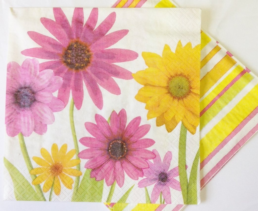 Daisies & Rainbow Stripes 2-Ply Large Party Napkins Great for Wedding or Spring Party - 2 Designs Double Sided (Pack of 24)