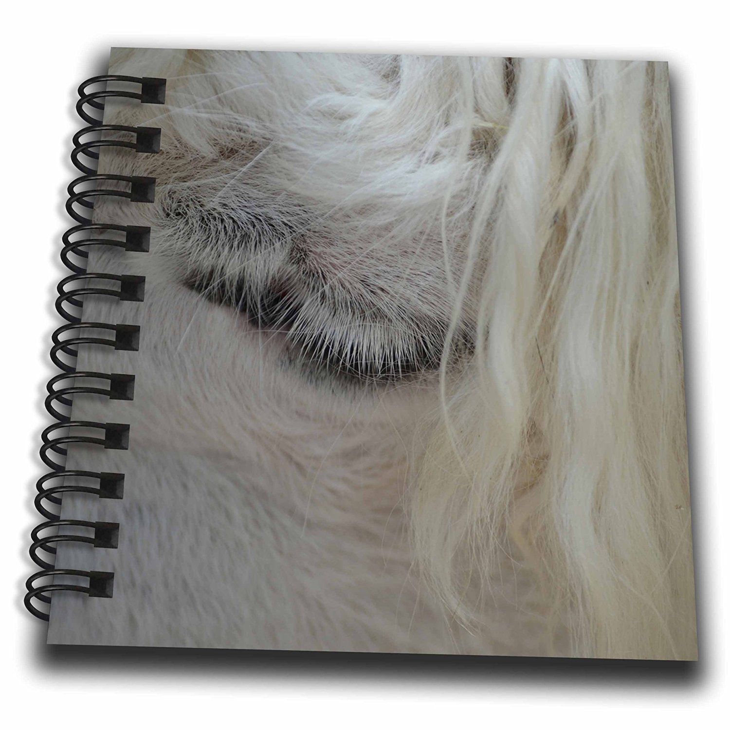 Susans Zoo Crew Animals - White Llama Eye Under Hair - Mini Notepad 4 x 4 inch (db_216030_3)