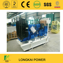 diesel generator set powered by Lovol engine 1006TG1A12 series