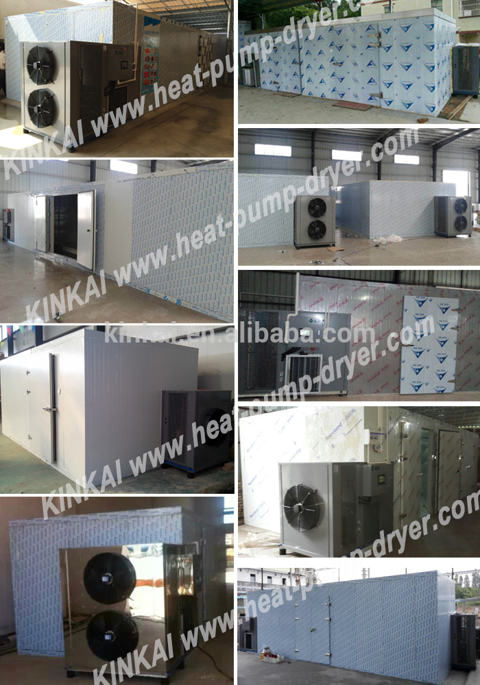 Warmtepomp type mollige hot air droger/sinaasappelschil dehydrator oven/apple chip droogmachine