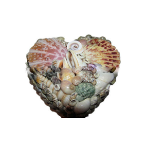 Newcoming Beautiful Shell Designed Resin Gift Box Wholesale