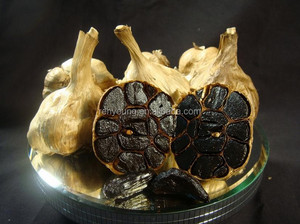 BLACK GARLIC P.E.(polyphenol>=3.0%)