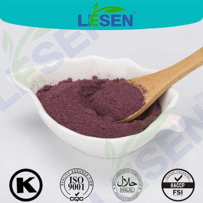 Hot Selling Maqui Berry Extract Powder