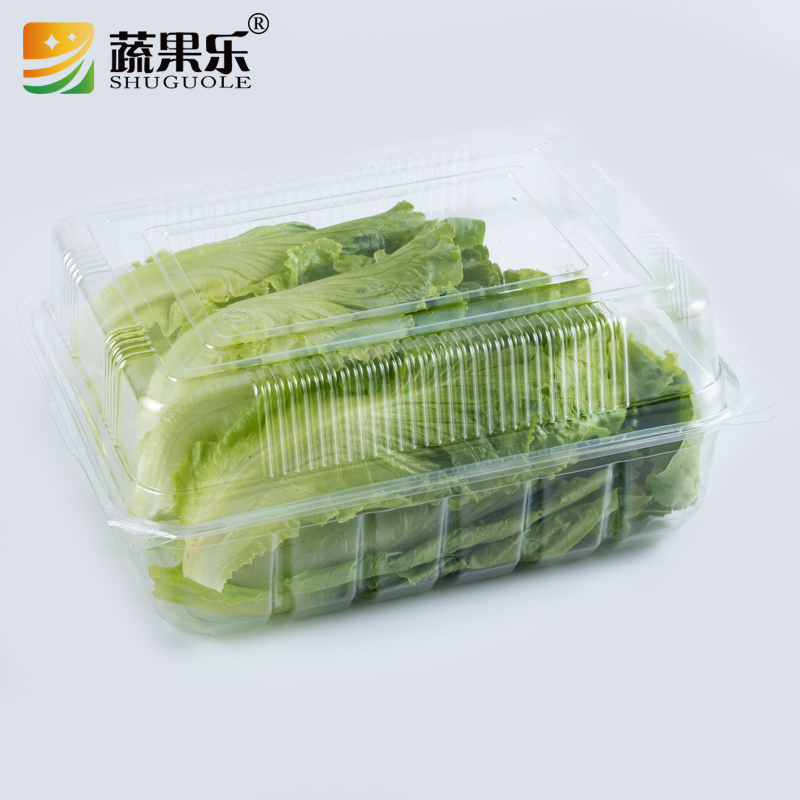 Blister clear disposable PET plastic punnets for fruits and vegetable