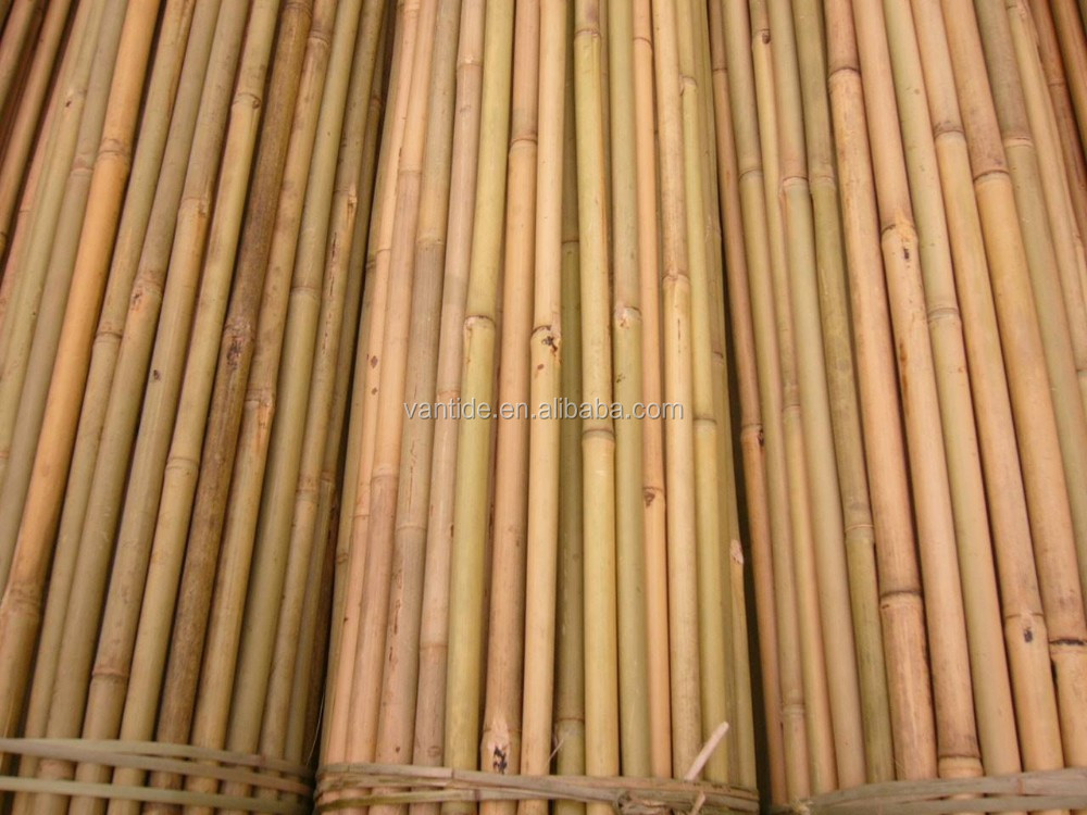 bamboo garden stakes. Garden Bamboo Poles Plastic, Plastic Suppliers And Manufacturers At Alibaba.com Stakes N