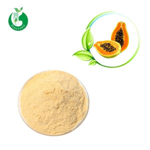Carica papaya extract pawpaw seed extract