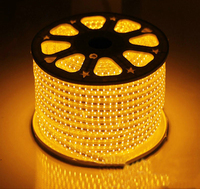 2835 120 leds/m 100m/roll ultra bright led strip lighting