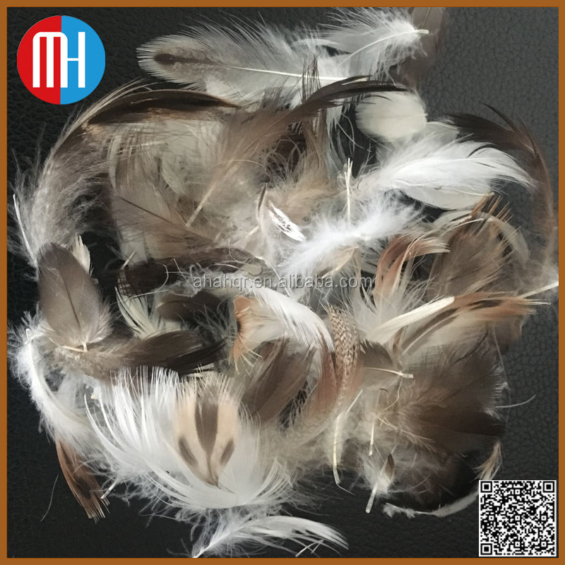 Wholesale washed gray duck feathers for sale