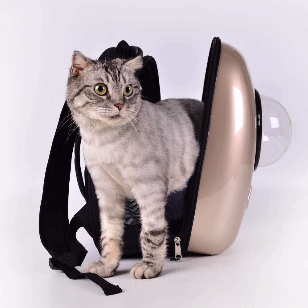 2016 New Arrival Luxury Wholesale Foldable Cat Carrier